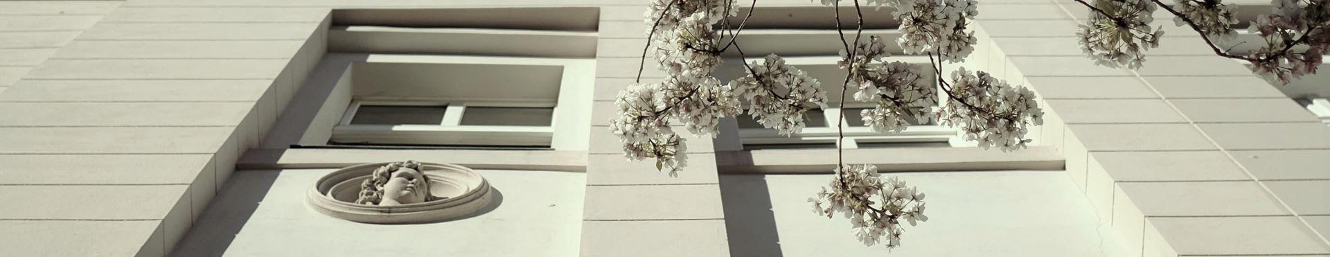 urban spring (13)